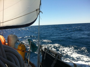 Trucking along under sail